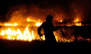 Google Maps vous montre désormais les incendies en temps réel